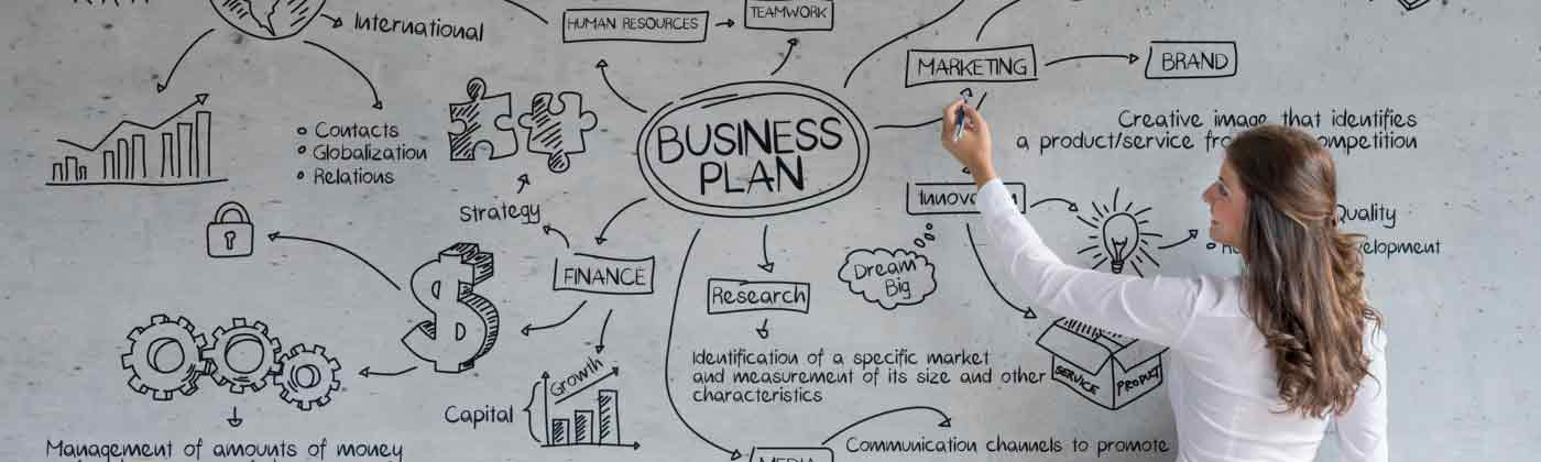 What is your business plan