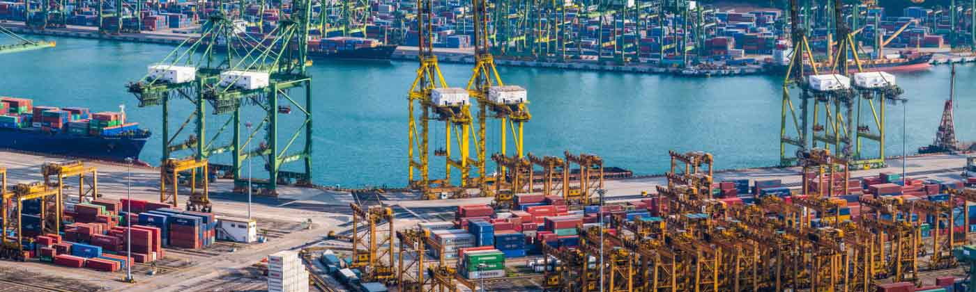 import export business advice