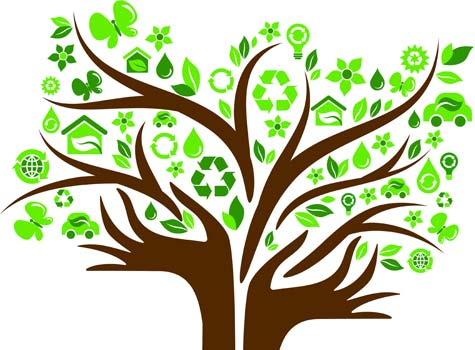 SMBs Payoff In Going Green
