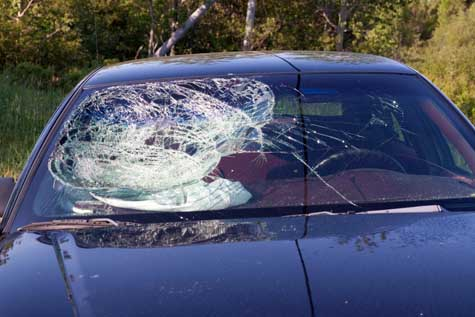 Auto Glass Replacement and Repair Business