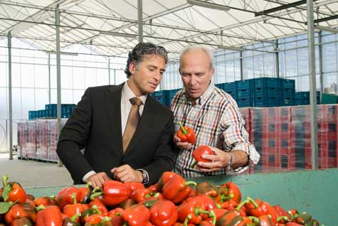 Fruit and Vegetable Brokers and Dealers Business