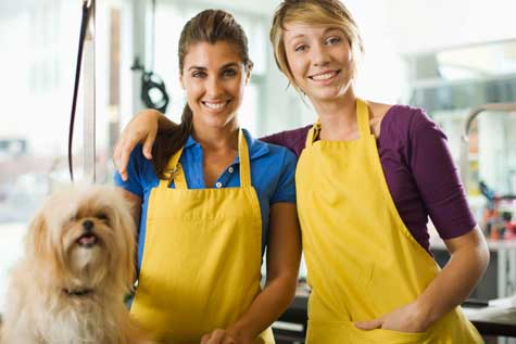 Starting A Pet Grooming School Open A Business Resources For