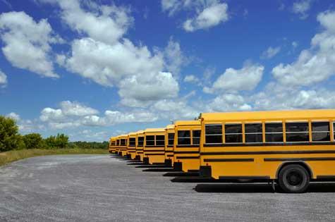 School Bus Transportation Services