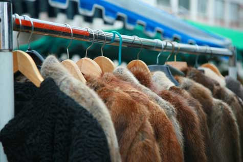 Used Fur Dealers Business